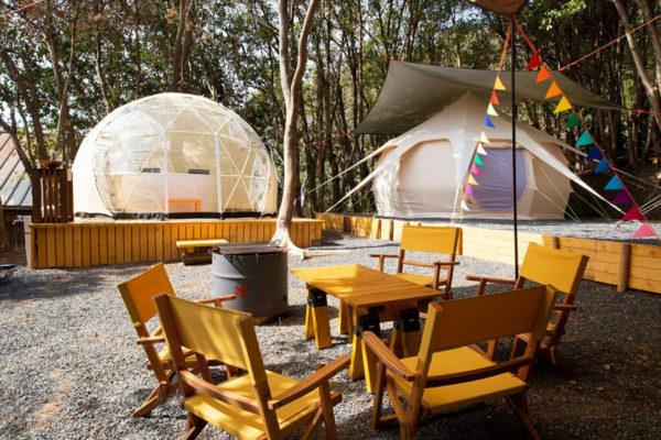 田曽フォレストキャンプ(TASO FOREST CAMP)