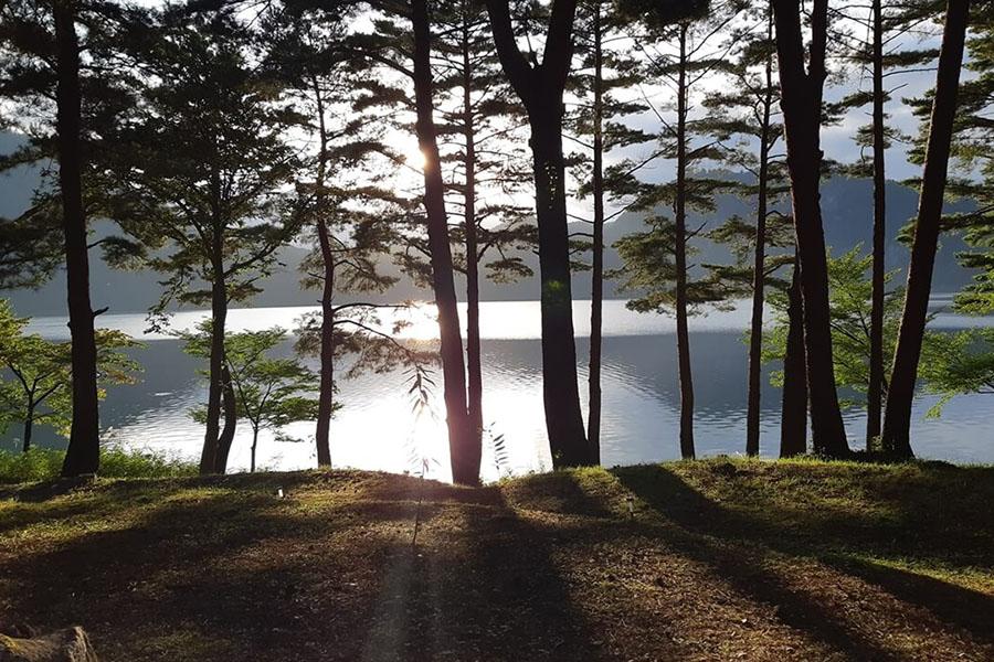 Dom'Up沼沢湖の写真8枚目